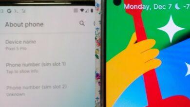 تصاویر جدیدی از Google Pixel 5 Pro رؤیت شد